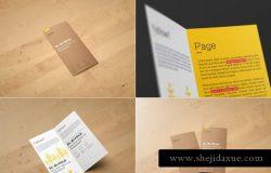 对折页小册子传单样机 DL Bi-Fold Brochure Mock-Up