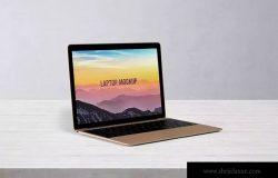 笔记本电脑屏幕演示样机模板 14×9 Laptop Screen Mock-Up – Gold