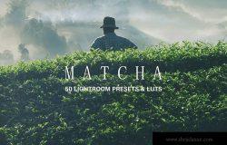 50款绿色背景摄影后期调色处理LR预设 50 Matcha Lightroom Presets and LUTs