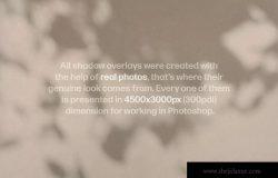 高清物体阴影背景图片素材包 Shadow Play Photo Overlays