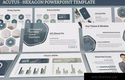 简约设计风格企业里程碑/企业宣传PPT模板下载 Acutus – Hexagon Powerpoint Template