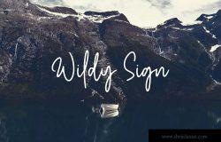 Monoline风格英文草书手写字体下载 Wildy Sign