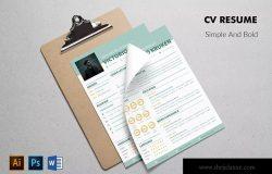 两列式个人简历&推荐信设计模板 CV Resume Professional And Bold