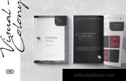 2品牌手册企业简介画册宣传册杂志房地产楼书设计模板