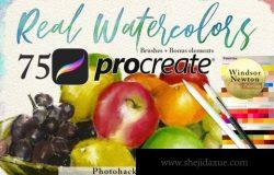 Procreate水彩绘画笔刷套装