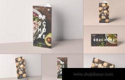 时尚高端三角形宣传册三折页桌牌菜单菜谱水牌VI设计样机