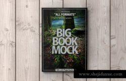 平装书书本样机模板 Book Mockup