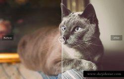 动物摄影照片处理效果PS滤镜插件 Pet Photoshop Actions Collection