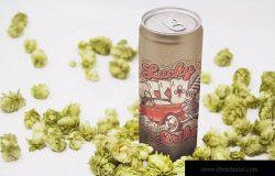 16盎司啤酒易拉罐外观设计透视图样机