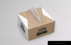 2件装纸盒包装设计样机模板