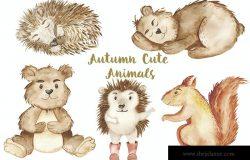 秋季手绘可爱水彩动物插画素材集