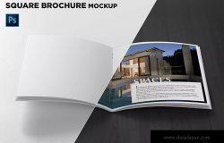 方形画册产品手册内页前视图样机