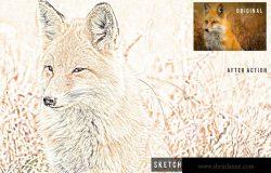 彩铅素描照片特效一键生成PS动作 Sketch Color Pencil Action