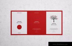A5三折页设计小册子样机展示模板 Tri-Fold Brochure A5 Mock-up