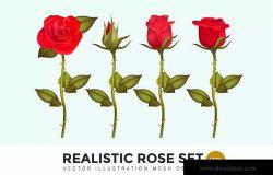 逼真玫瑰花矢量格式设计素材