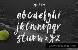 时尚/美容/食品/服装和杂志设计绝配手写英文字体 Sanös Extended Script Font