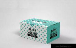 产品包装纸箱设计效果图样机 Paper Carrier with 2 Closure Options