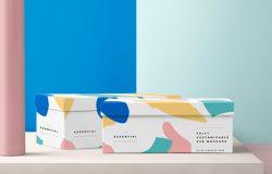 清新可爱鞋盒展示样机