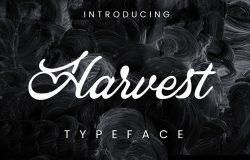 复古抽象风格英文手写连笔字体