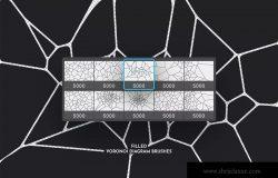 Voronoi不规则多边形几何图案PS笔刷 Voronoi Diagram Photoshop Brushes