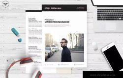 项目营销管理项目经理应聘简历模板 Professional CV Template