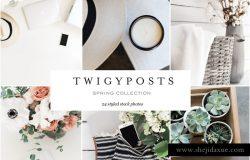 春季/夏季灵感场景背景贴图 Spring Styled Stock Photo Bundle