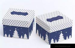 立方体礼品盒外观设计模板03 Cube Gift Box Mockup