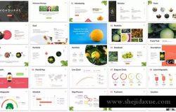 水果蔬菜品牌宣传PPT设计模板下载 Monduras – Nature Powerpoint Template