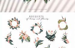 热带植物水彩手绘图案设计素材套装 Tropics & Coral Watercolor Set