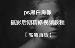 ps黑白肖像摄影后期精修视频教程