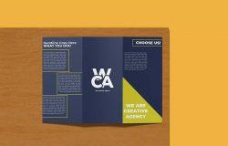 2个视图三折页宣传册设计样机模板