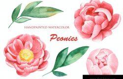 淡雅手绘水彩牡丹花卉元素剪贴画