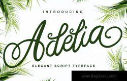 优雅笔画线条英文草书字体下载 Adelia – Elegant Script Typeface