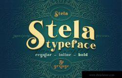 复古外观风格英文衬线装饰字体下载 Stela – Display Font