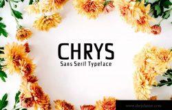 极简现代设计风格的无衬线字体套装 Chrys Sans Serif Font Family Pack