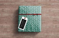 礼品包装盒展示模型Mockups