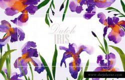荷兰鸢尾花卉水彩艺术剪贴画 Dutch Iris-Watercolor Clip Art