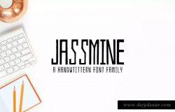 优雅手写英文字体[4种字形] Jassmine Hand Written 4 Font Family