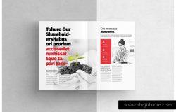 项目招标企业介绍宣传画册模板