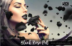 5K高清黑玫瑰元素叠层背景素材 5K Black Rose Petals Overlays