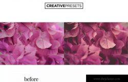 照片后期处理柔和色调LR调色预设 Pastel Tones Lightroom Presets