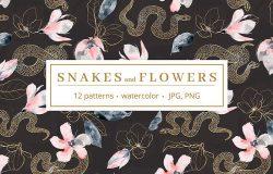 高贵品质的蛇&花卉水彩图案合集