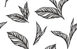 完美的黑白图案,叶子呈复古风格。设计壁纸图案的背景填充网页表面纹理。