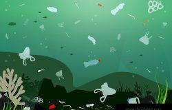 塑料污染图解