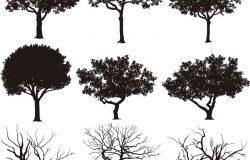 剪影中的向量树。创造更多的树,叶子和光秃秃的树在底部。