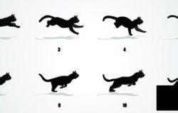 猫运行周期动画序列动画帧