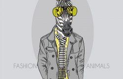 灰色背景下黄眼镜斑马的时尚图解