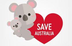 向量插图可爱的考拉与大心。拯救澳大利亚旗帜。