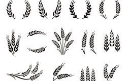 小麦花环和谷穗