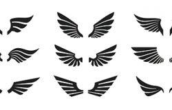 一组黑色翅膀图标。翅膀徽章。收藏翅膀徽章。矢量图
